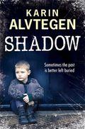 AVShadow